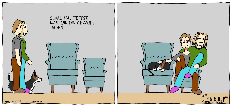 Neuer Sessel Corgwn Ein Corgi Comic